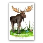 Postcard Illustration and Design